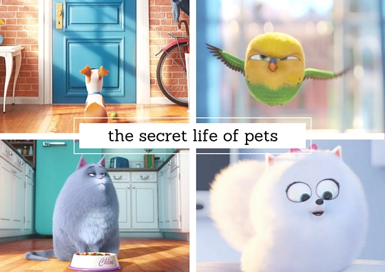 EVENT UPDATE & TICKETS | The Secret Life of Pets